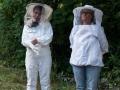 Mälaröarnas biodlarförening