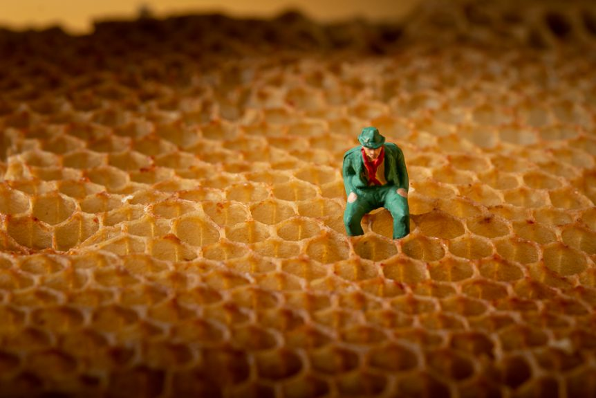 Miniatrure figure on honeycomb. Photo by Mats Andersson, Stenhamra. www.bubbelbubbel.se