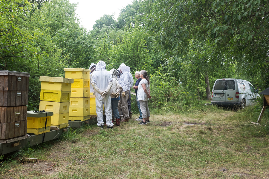 Biodlarmöte 2017-07-16