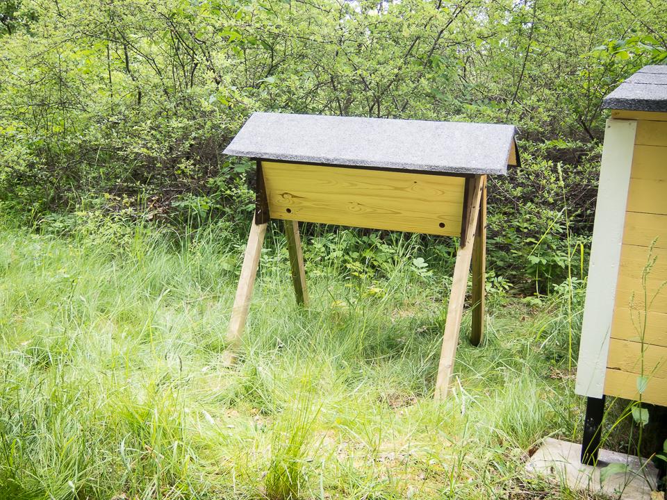 Top bar hive in Sweden
