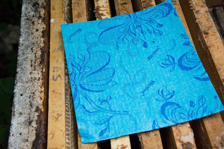 Behandling av bisamhällen mot varroakvalster med myrsyra. Fotograf: Mats Andersson, Stenhamra, www.bubbelbubbel.se